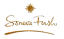 sonevafushi-logo
